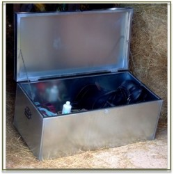 Small Storage Trunk