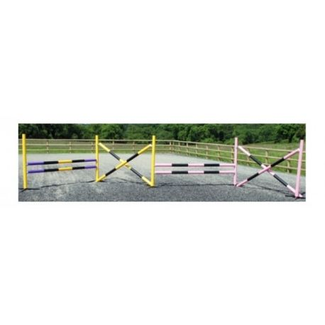 4 Fence Super Starter Course with Practice (lightweight) Pole Choice