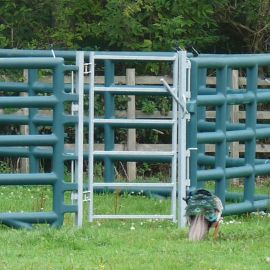 Corral Pen System - Pedestrian Gate - 1 Panel