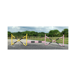 3 Fence Starter Course with Practice (lightweight) Pole Choice
