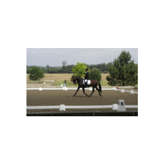Dressage Arena Equipment