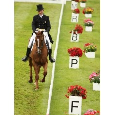 Dressage Markers and Equipment
